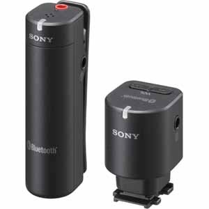 SONY Wireless Microphone (ECM-W1M)